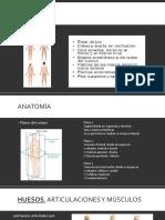 Anatomía y Antropome
