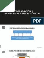 Biodegradación y transformaciones biologicas