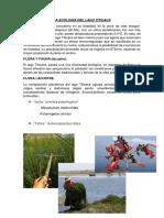 LA ECOLOGIA DEL LAGO TITICACA (2).docx