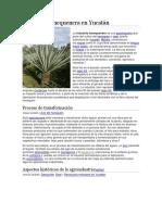 Industria henequenera en Yucatán.docx