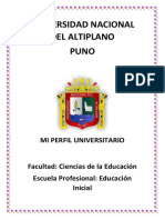 Perfil Universitario RUT