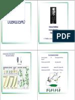 AULA 7 - Dihibridismo. virtual.pdf