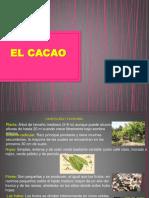 elcacao-160909142356