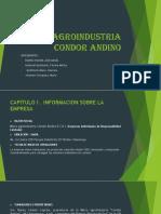 Micro Agroindustria Condor Andino