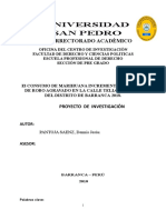 AVANCE PROYECTO DE INVESTIGACION 2018.docx