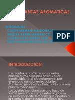 PLANTAS AROMATICAS-1.pptx