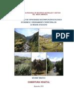Uso Actual Vegetación-Ayacucho