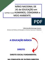 4_1seminario_nacional_dpedhuc_profa._clelia_brandao.pdf