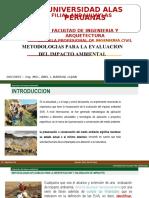 METODOS DE EIA.pptx