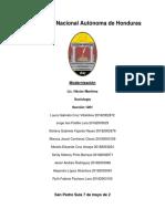 Sociologia Informe
