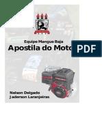 DocGo.net-Manutenção e Regulagem Do Motor.pdf