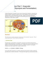 Cell Respiration Part 1
