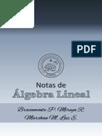 Libro Algebra Lineal Capitulos 0 1