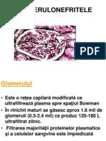 Glomerulonefrite Acute Si Cronice 2017