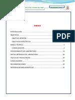 Informe 2017 II
