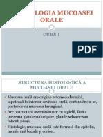 Curs 1.pptx