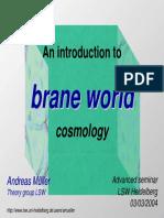 Brane World
