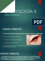 Embriología II