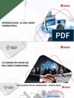 1._introduccion__la_cadena_del_gnl_como_combustible__esan.pdf