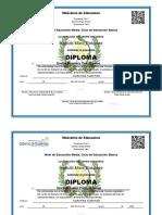Diplomas 2017.docx