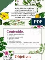 Constance (1).pptx