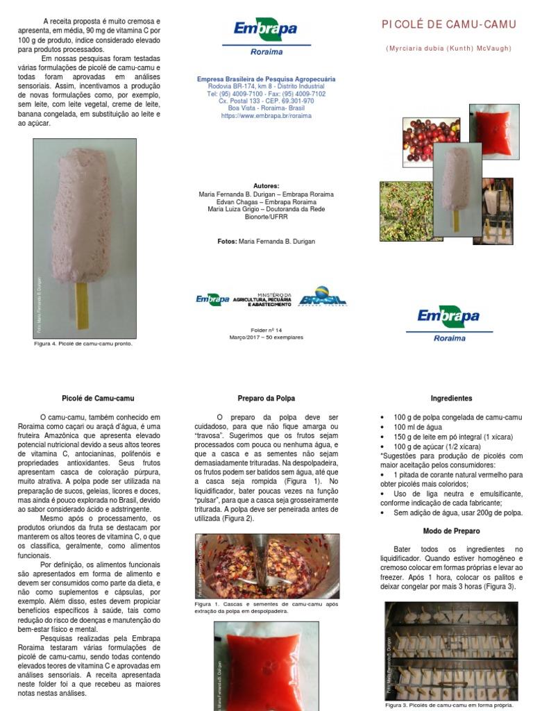 Folder Camu   Functional Food   Comida y vino bf2556c1f6