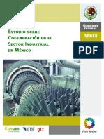 2009-12-Cogen_sec-ind-Mex[1].pdf