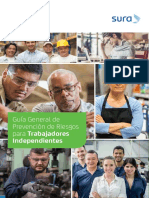 guia_general_independientes.pdf