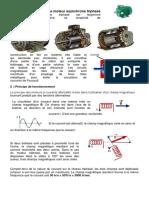 pdf word