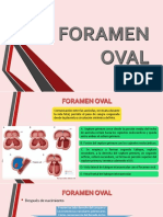Foramen Oval