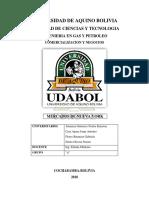 UNIVERSIDAD DE AQUINO BOLIVIA.pdf