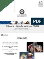 Clase 18 Miologia y Vascularizacion MMSS_DBIO1050