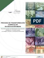 PROCESO DE TRANSFORMACIÓN�URRICULAR EN EDUCACIÓN  MEDIA�0.08.16(pdf-interac.pdf