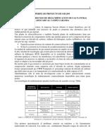 Perfil desacidifiacion modificado2015