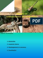 Chapitre Viii- Les Arthropodes
