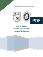 Guía Propedeutico Álgebra 2018