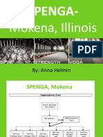 spenga pp revenue project-anna helmin