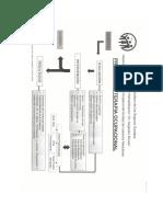 Formatos Proceso de Valoración y Diagnostico Ocupacional