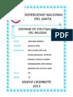 Informe Del Besique