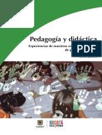 Pedagogia y Didactica.pdf