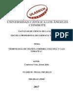 FACULTAD DE CIENCIA DE LA SALUD.docx