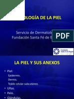 1-Semiología de La Piel