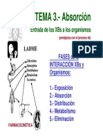 T3-exposicion-absorcion.pdf