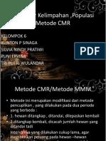 Menaksir Kelimpahan Populasi Menggunakan Model CMR