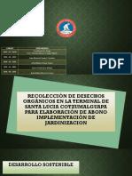 proyecto desarrollo sostenible-1
