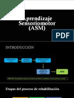 Aprendizaje sensoriomotor