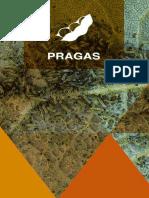 TMG Pragas Soja