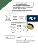 Calidad Microbiologica de Pulpa de Lulo