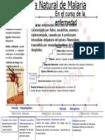 historianaturaldelamalaria-110703203947-phpapp02