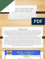 Marcha Analitica Del Grupo de La Plata